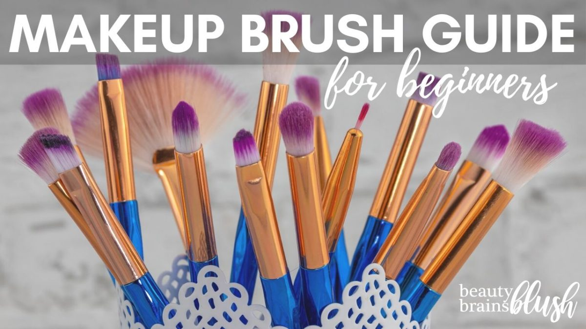 Makeup brush guide for beginners - beatybrainsblush.com